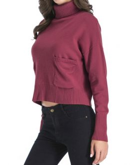 Pullover High Collar Long Sleeves Short Sweaters