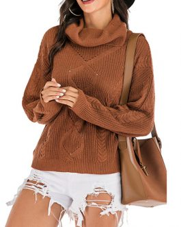 Pullover High Collar Long Sleeves Sweaters