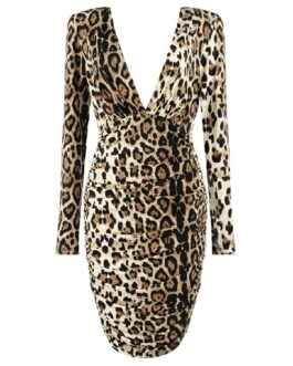 Sexy Leopard Deep V- Neck Night Out Party Mini Dress