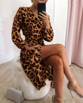Sexy Leopard Long Sleeve Casual A-Line V-Neck Vintage Dress