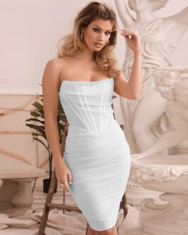 Sexy Strapless Line Mesh Backless Midi Party Dress