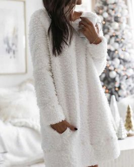 Shift Jewel Neck Long Sleeve Short Dress