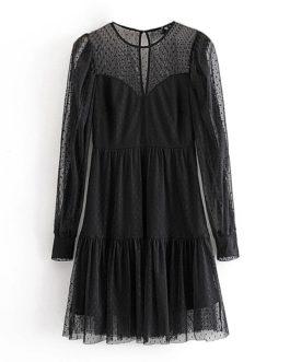 Lace Mesh Patchwork Mini Dress
