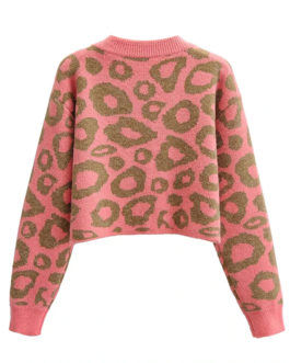 Loose Batwing Long Sleeve Knitted Sweaters