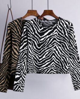 Retro O Neck Long Sleeve Zebra Pattern  Loose Pullovers Sweater