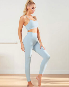 Activewear Indoor Gym Clothing Nylon Sexy Yoga 2 Piece Set