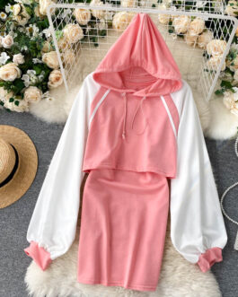 Hooded Long Sleeve Short Tops And Sleeveless Vest Dress Two Pieces Set