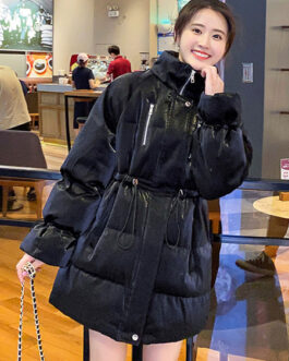 Stand Collar Long Sleeve Zipper Casual Coat Outerwear
