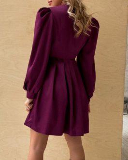 sexy sleeves Deep v-neck high waist pleated elegant dress