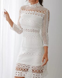 Lace Hollow Out Design High Neck Long Sleeve Elegant Dress