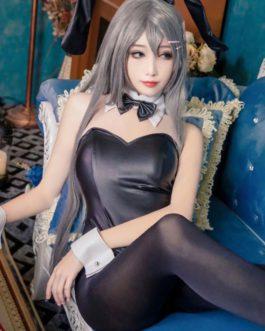 Costume Headwear Arm wear Choker Pantyhose Top 5-Piece Set Sakurajima Mai Cosplay Costumes