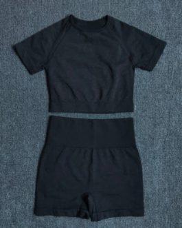 2Pcs Yoga Set Workout Sportswear
