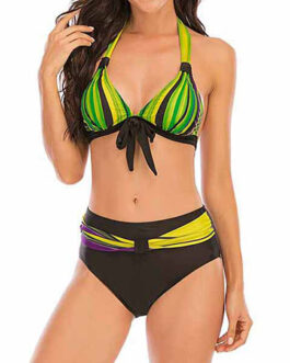 Retro Base Bowtie Accent Top Two-Piece Swimsuit